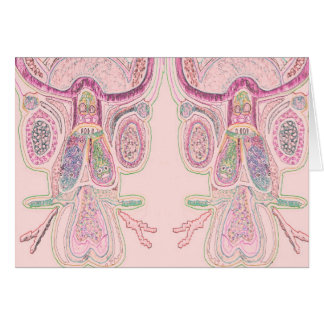 DoubleBull Pink Greeting Card