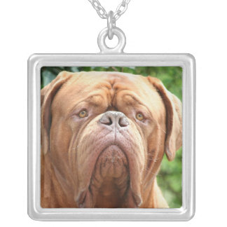Douge de Bordeaux (French Mastiff) Silver Plated Necklace