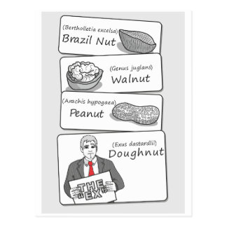 'Doughnut' Divorce Postcard