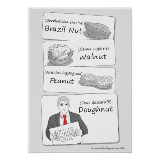 'Doughnut' poster of your ex!