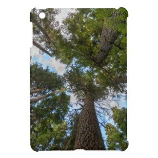 Douglas Fir tree canopy iPad Mini Cases