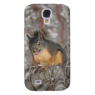 Douglas' Squirrel, Oregon Cascades Galaxy S4 Cover