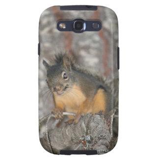 Douglas' Squirrel, Oregon Cascades Samsung Galaxy SIII Cases