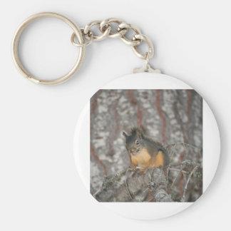 Douglas Squirrel Oregon Cascades Keychains