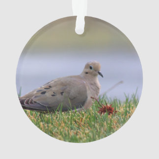 Dove Bird Ornament