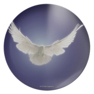 Dove flying through beam of light party plate