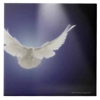 Dove flying through beam of light tile
