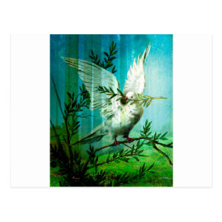 DOVE OF PEACE.jpg Postcard
