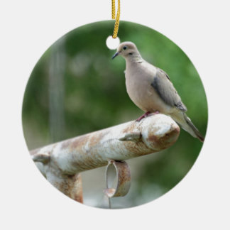 Dove on a Post Christmas Ornament