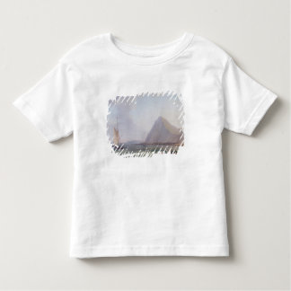 Dover Cliffs Toddler T-Shirt