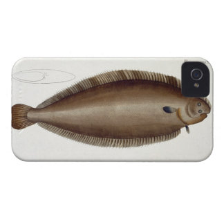 Dover Sole (Solea Solaea) plate XLV from 'Ichthyol Case-Mate iPhone 4 Cases