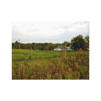 Down on the Farm (1) Canvas Print