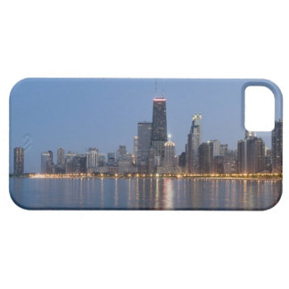 Downtown Chicago Skyline Case For The iPhone 5