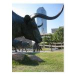 Downtown Dallas, Texas Postcard