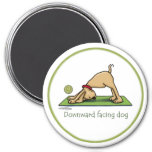 Downward Facing Dog Cartoon