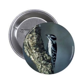 Downy woodpecker buttons