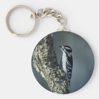 Downy woodpecker basic round button key ring