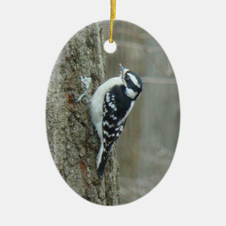 Downy Woodpecker Male & Female Ornament