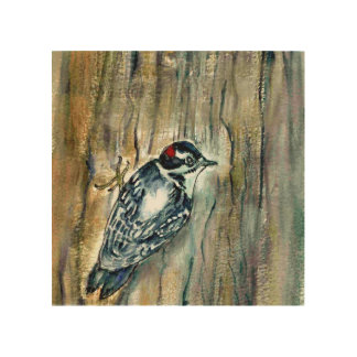 Downy Woodpecker Wood Canvas