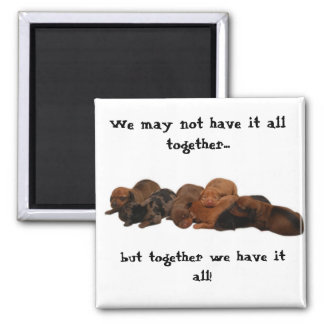 Doxie pups, We may not have it all together...,... Square Magnet