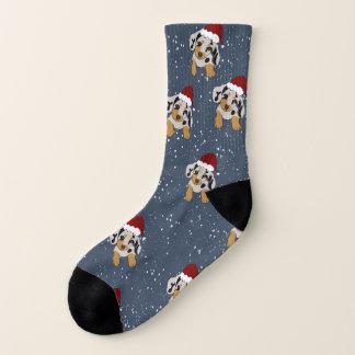 Doxie Through The Snow Socks 1