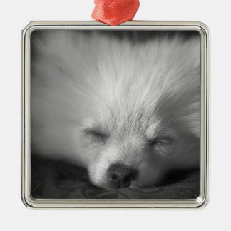 Dozing Pomeranian Square Metal Christmas Ornament
