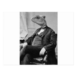 Drachma Lizard Postcard