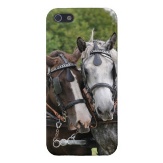 Draft horses portrait iPhone 5 cover