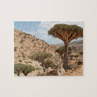 Dragon Blood Tree forest, Socotra Island, Yemen Jigsaw Puzzle