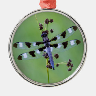 Dragon fly perched on grass, Canada Silver-Colored Round Decoration