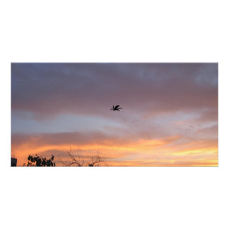 Dragon in the Sky Picture Card