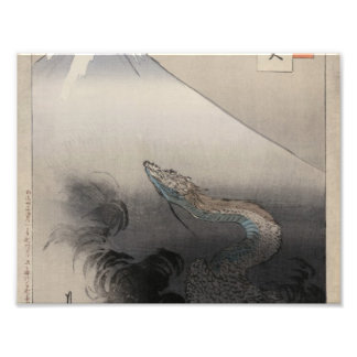 Dragon rising to the heavens photo art