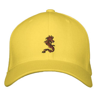 Dragon runner embroidered hats