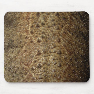 Dragon Scales Mousemat
