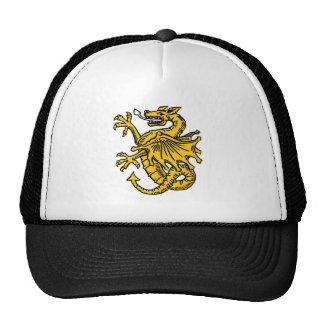 Dragon symbols and artwork mesh hat