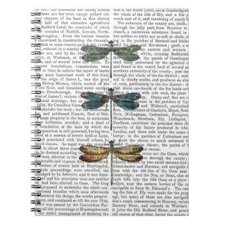 Dragonflies Print 2 Notebook
