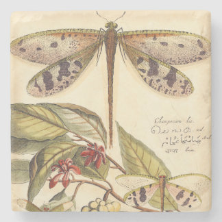Dragonflies with Leaves and Fruit Stone Coaster