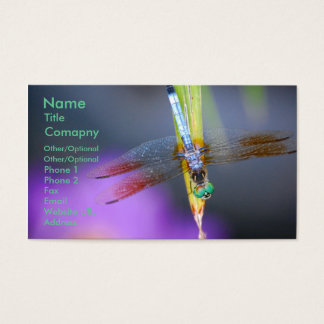 Dragonfly 1 - business card template