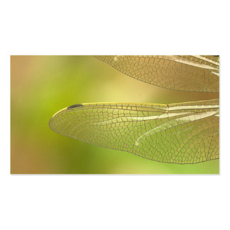 dragonfly-348433  dragonfly insect animal wing sum business card