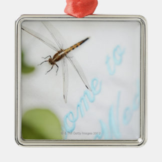 Dragonfly 4 christmas ornament