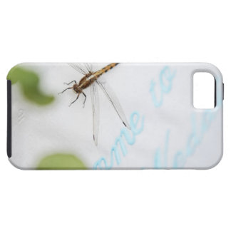 Dragonfly 4 iPhone 5 case