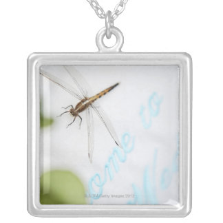 Dragonfly 4 silver plated necklace