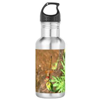 Dragonfly 532 Ml Water Bottle