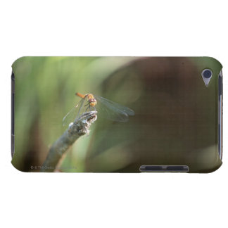Dragonfly 5 iPod touch Case-Mate case