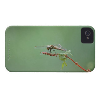 Dragonfly 6 Case-Mate iPhone 4 case