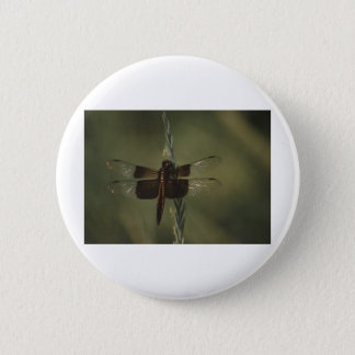 Dragonfly 6 Cm Round Badge