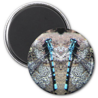 Dragonfly 6 Cm Round Magnet