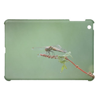 Dragonfly 6 cover for the iPad mini