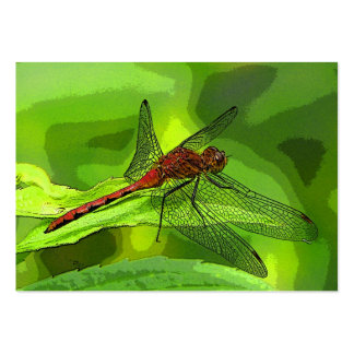 Dragonfly ATC Pack Of Chubby Business Cards