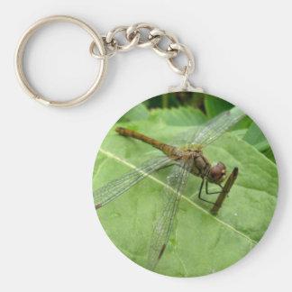 dragonfly basic round button key ring